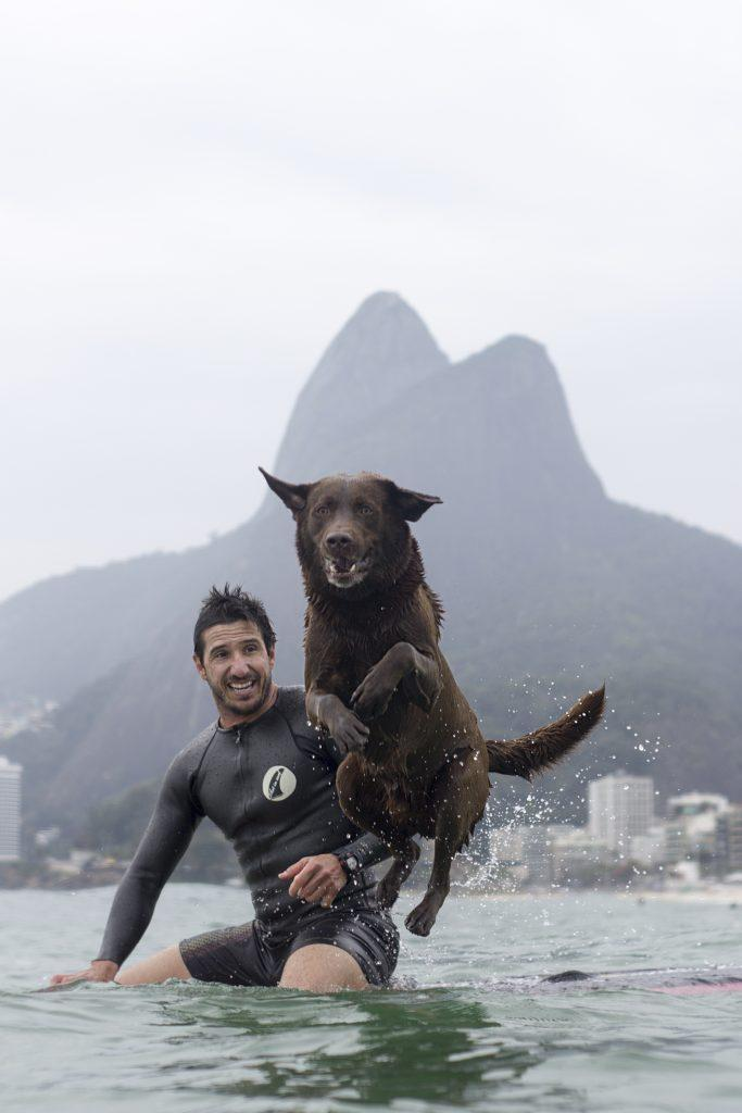 bono surfer dog